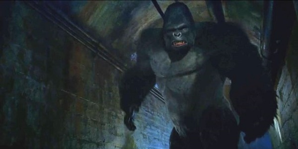We did watch a lot of apes, but we didn't watch Gorilla Grodd