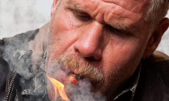 Ron Perlman (The Guardian)